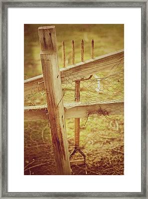 Spading Fork On Chicken Wire Fence Morning Sunlight Framed Print