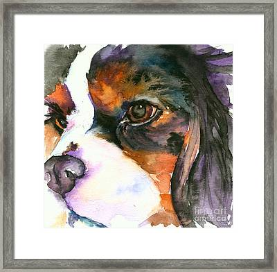 Framed Print featuring the painting Spaniel by Christy Freeman