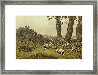 Spaniels Framed Print by Henry Thomas Alken