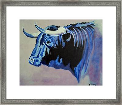Spanish Bull Framed Print