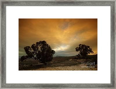 Spanish Landscapes Framed Print by Angel  Tarantella