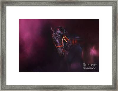 Spanish Passion - Pre Andalusian Stallion Framed Print by Michelle Wrighton