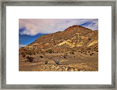 Spanish Skirts 1 Framed Print by Judy Vincent