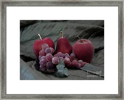 Framed Print featuring the photograph Sparkeling Fruits by Sherry Hallemeier