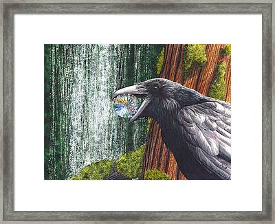 Sparkle Framed Print by Catherine G McElroy
