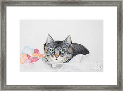 Sparkle Framed Print by Raymond Potts