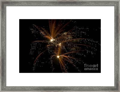 Sparkles Framed Print by Jeannie Burleson