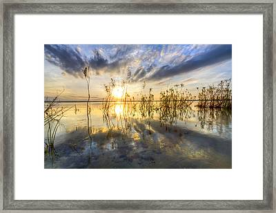 Sparkley Waters Framed Print by Debra and Dave Vanderlaan