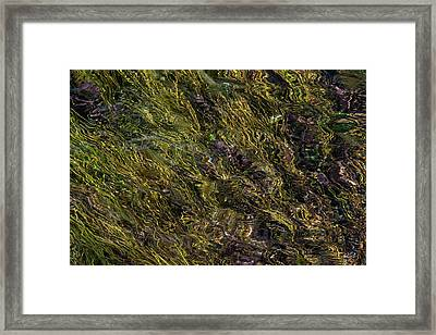 Sparkling Clear Waters Framed Print by Leland D Howard
