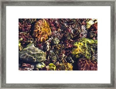 Sparkling Creek Bed 3 Framed Print by Leland D Howard