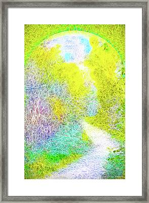 Sparkling Pathway - Trail In Santa Monica Mountains Framed Print by Joel Bruce Wallach