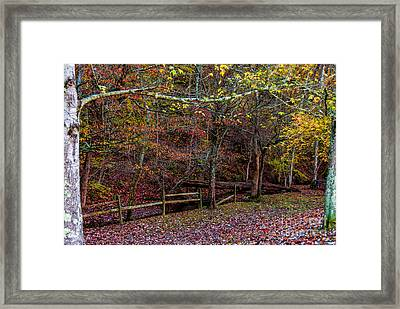Sparkling With Colors - Natchez Trace Framed Print by Debra Martz