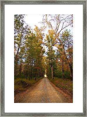Framed Print featuring the photograph Sparks Lane by Bob Decker