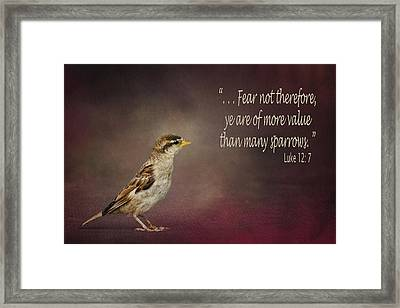 Sparrow - Bible Verse Framed Print