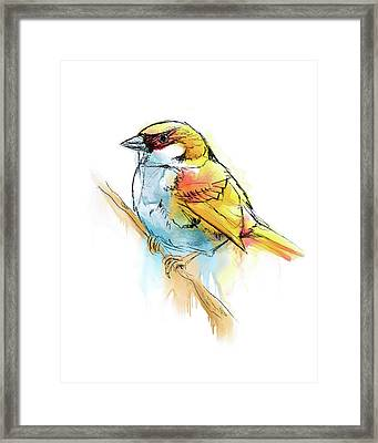 Sparrow Digital Watercolor Painting Framed Print