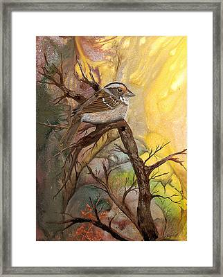 Framed Print featuring the painting Sparrow by Sherry Shipley