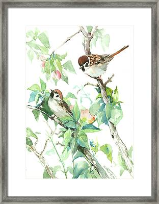Sparrows And Apple Blossom Framed Print by Suren Nersisyan
