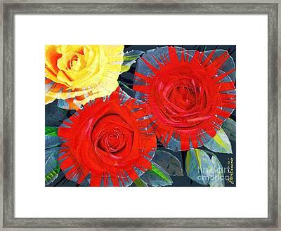 Spattered Colors On Roses Framed Print by Don Evans