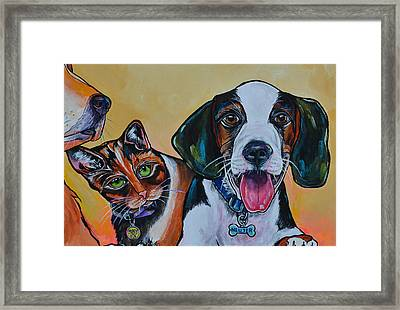 Spay And Neuter Framed Print