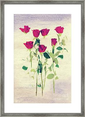 Special Day Framed Print by Svetlana Sewell