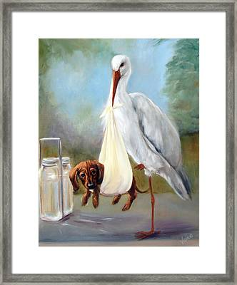 Special Delivery Framed Print by Stella Violano