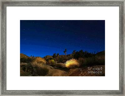 Special Glow Framed Print