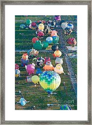Special Shapes Framed Print by Jim Chamberlain