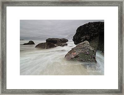 Special Time Of The Year Framed Print