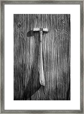 Specialized Hammer Framed Print