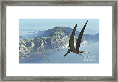 Species From The Genus Anhanguera Soar Framed Print by Walter Myers