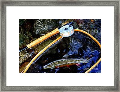 Speckled Trout Framed Print