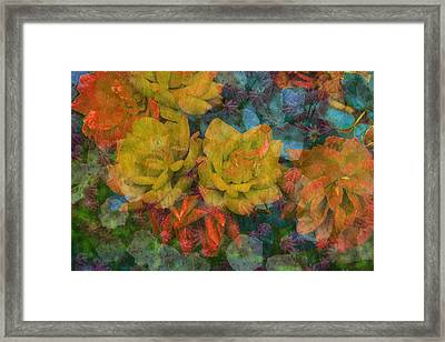 Spectacle Framed Print by Eric Ewing