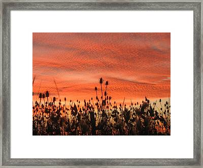 Framed Print featuring the photograph Spectacular Sky On Fire by Maciek Froncisz