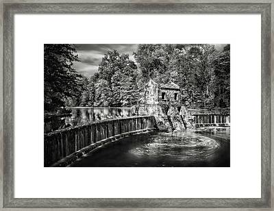Framed Print featuring the photograph Speedwell Swirls by Eduard Moldoveanu