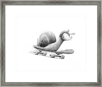 Speedy Framed Print