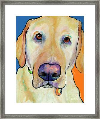 Spenser Framed Print by Pat Saunders-White