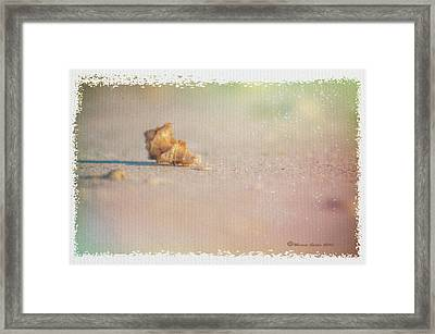 Spent Framed Print by Marvin Spates