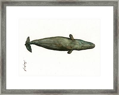 Sperm Whale Sleeping Framed Print by Juan Bosco