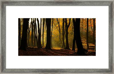Speulder Panorama Framed Print