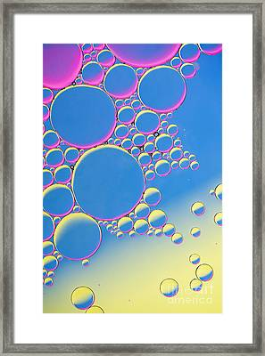 Spherelicious Framed Print by Tim Gainey