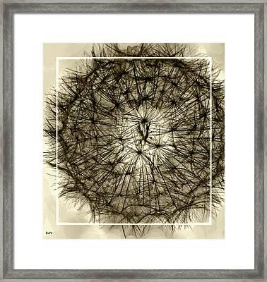 Spheres Of Color Brown Framed Print by Debra     Vatalaro