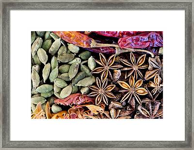 Spice Collection  Framed Print