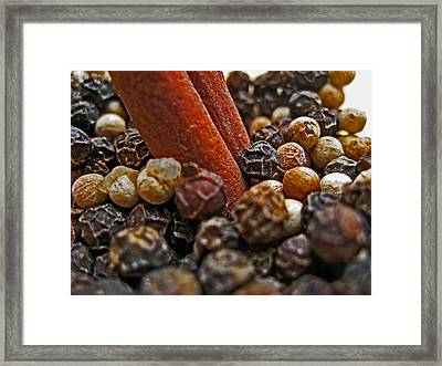 Spices. Cinnamon And Pepper. Framed Print