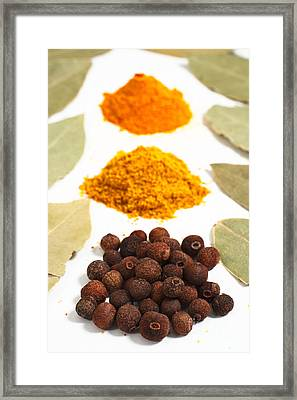 Spices Framed Print by Gaspar Avila