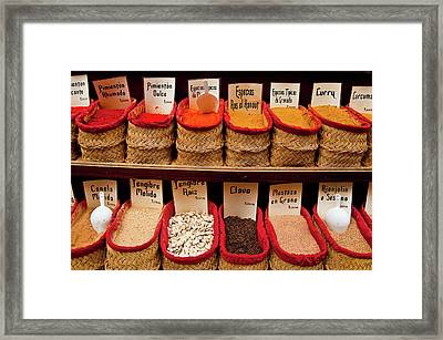 Framed Print featuring the photograph Spices  by Harry Spitz
