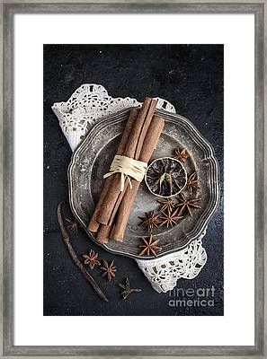 Spices In Silver Plate Framed Print
