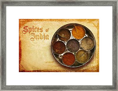 Spices Of India II Framed Print by Prajakta P