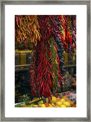 Spicy Peppers Framed Print by Svetlana Sewell
