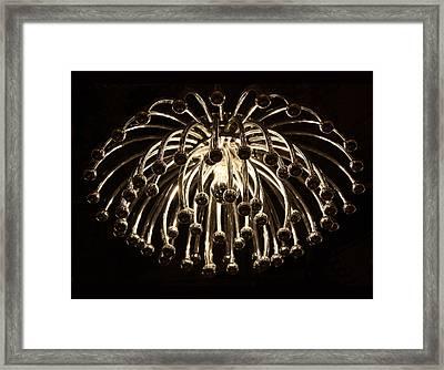 Spider Light Framed Print by Kristin Elmquist