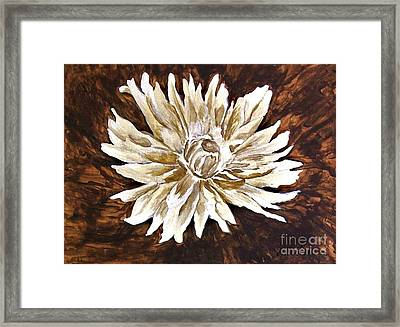 Spider Lily Lucy Framed Print by Marsha Heiken